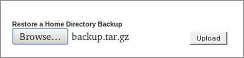 النسخ الإحتياطى Backups